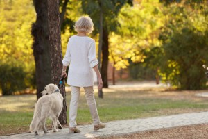 Senior,Woman,Walking,With,Dog,In,Park