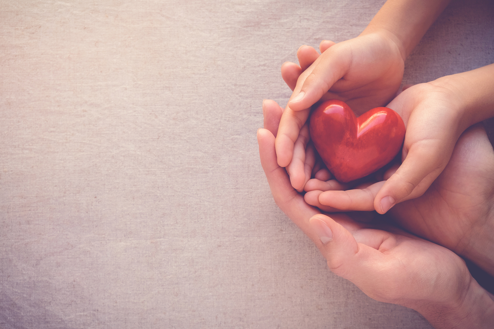 Adult,And,Child,Hands,Holding,Red,Heart,health,Care,,Donate,And
